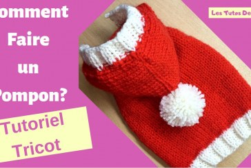 Tutoriel: Comment faire un pompon?