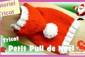 Tutoriel Tricot: Petit Pull de Noël pour petits chiens