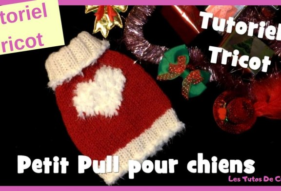 Tutoriel Tricot: Petit Pull Coeur Blanc pour chiens – Knitting Dog Sweater