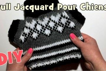 Tutoriel Tricot: Petit Pull Jacquard pour chiens DIY
