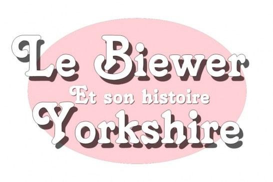 Le Biewer Yorkshire Terrier et son histoire