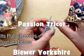 Passion Tricot: Petits pulls pour chiens de petites tailles