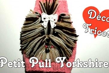 Déco Tricot: Petit Pull pour chiens avec la tête d'un Yorkshire