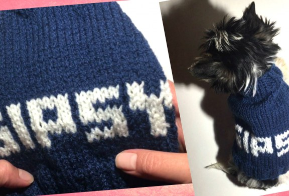 Pull pour Gipsy – Tutoriel Tricot Chiens