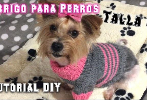 ¿Como Tejer Un Abrigo Para Perros? (Talla 6) Tutorial DIY