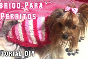 DIY Tutorial: Tejer Un Abrigo Para Perros