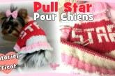 Tutoriel Tricot: Petit Pull Star pour chiens DIY
