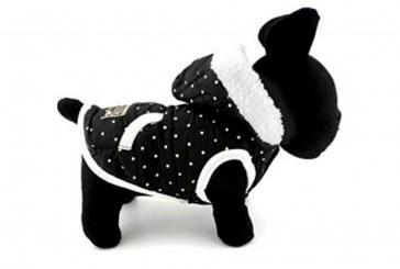 Veste d'hiver Pegasus pour petit chien avec doublure en polaire et capuche